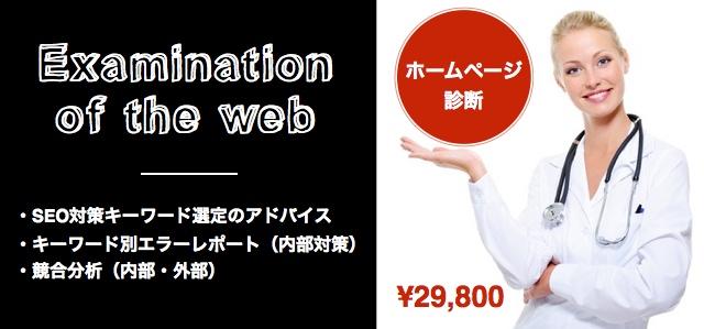 ホームページ診断(SEO対策)